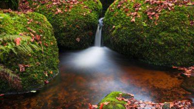 Dartmoor Nationalpark, England